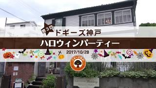 2017 年 10 月 28 日 ( 土 ) お洒落な街並みの神戸北野にある「異人館パ...