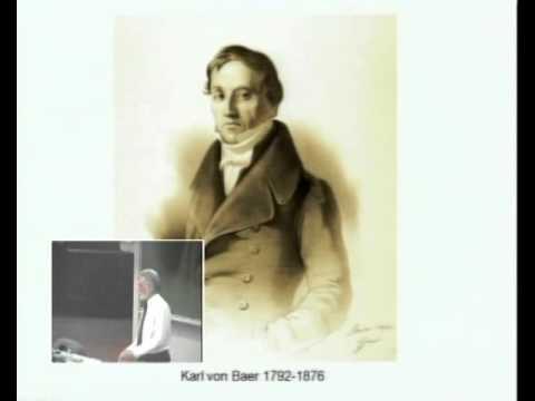 Darwin, embryologie et biologie cellulaire par H. Alexandre (UMONS)