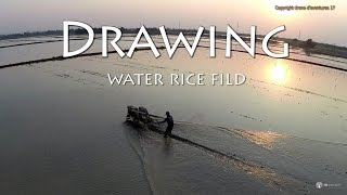 drawing rice water field in amazing thailand sunset