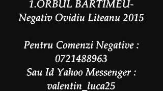 ORBUL BARTIMEU-Negativ Ovidiu Liteanu 2015