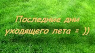 Последние дни лета...(Голубые озера, Черниговская область. Вот так мы закрываем сезон., 2016-08-30T11:39:50.000Z)