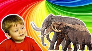Детям про Животных Сборник  МАМОНТ Рисунки Животных для Детей Слоны для Детей  Видео  Lion boy