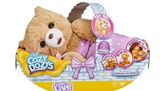 Little Live Cozy Dozys Cubbles the Bear Unboxing Toy Review