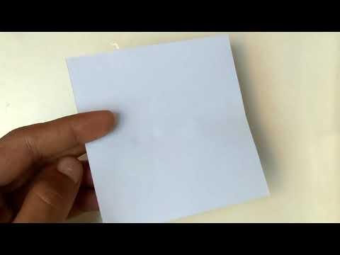 How to make litmus paper using turmeric