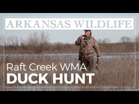 Duck Hunting On Raft Creek Bottoms WMA