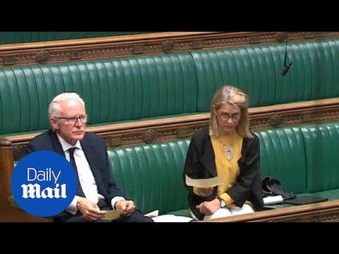 Moment MP Christopher Chope blocks 'upskirting' Bill reading