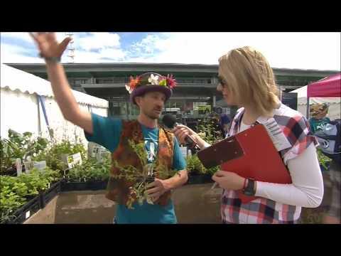 Festival of Nature 2017 - Live Interview - Avon Wildlife Trust - Feed Bristol
