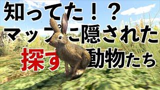 【隠し要素】世界に散らばった27匹の動物を探す旅【GTA5】