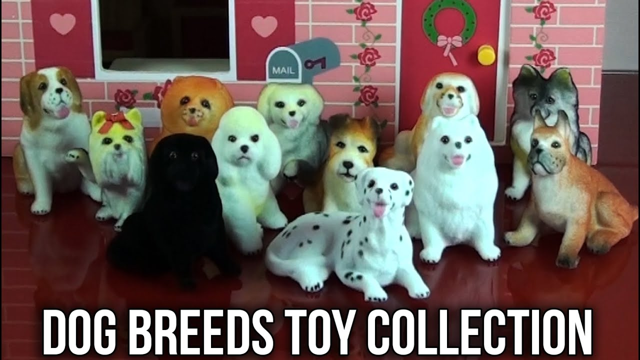 Toy Dog Breeds Pictures And Names : Dog breeds toy collection learn names and