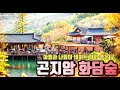서울근교 가족나들이 곤지암 화담숲