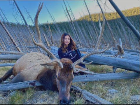 Sierra's Bull Elk 2020!