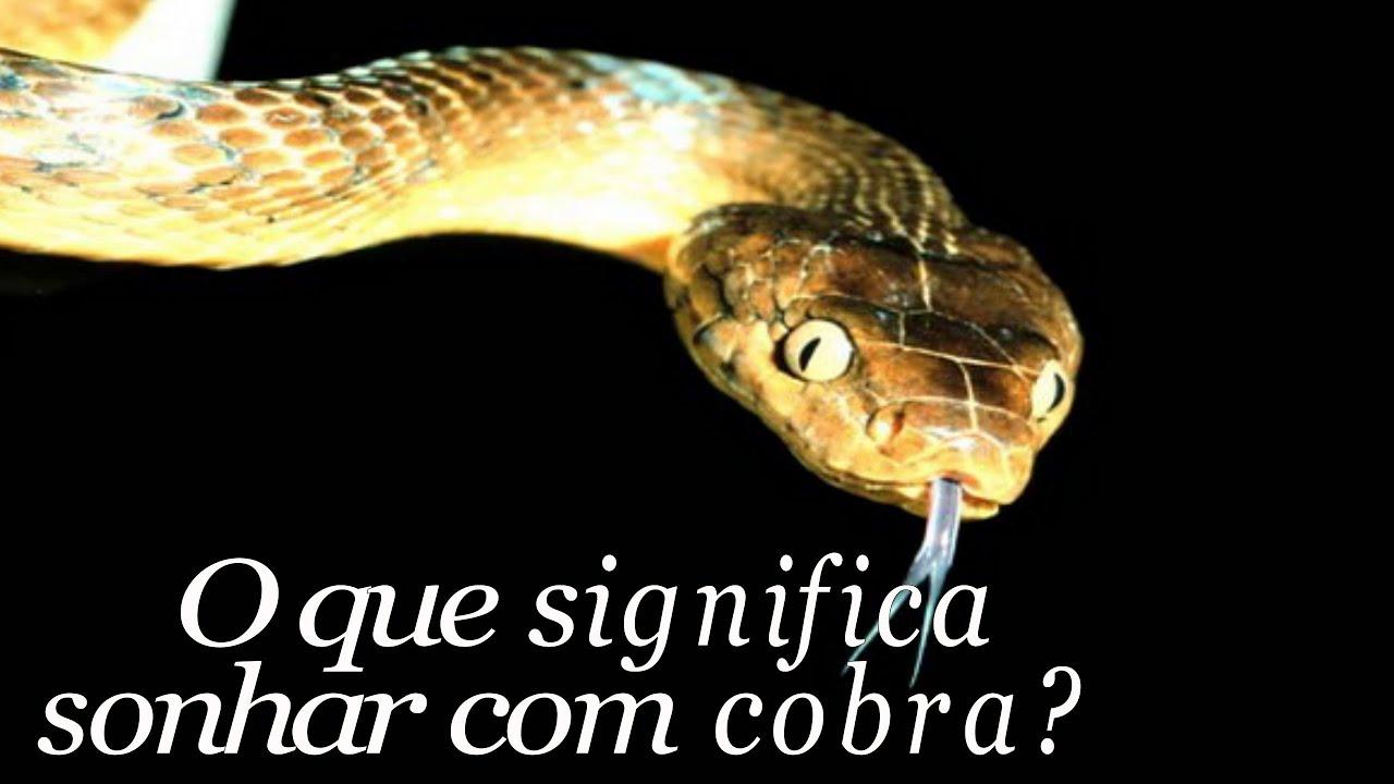 Mural Dos Sonhos O Segredo Of Significado Dos Sonhos Cachimbo E Cobra Youtube