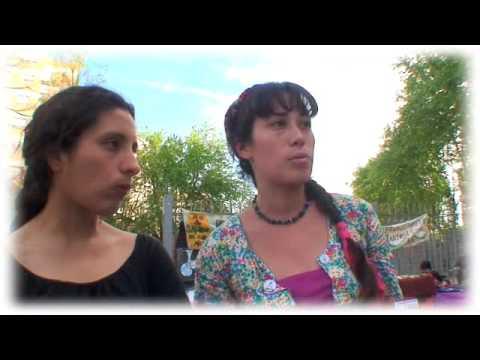 Tacuru Organic Network / El Camino Organico / Caballito - Buenos Aires