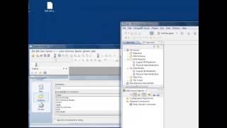 IBM System Architect - IBM Infosphere Data Architect Integration