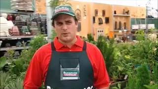 BUNNINGS WAERHOUSE 2006 AD