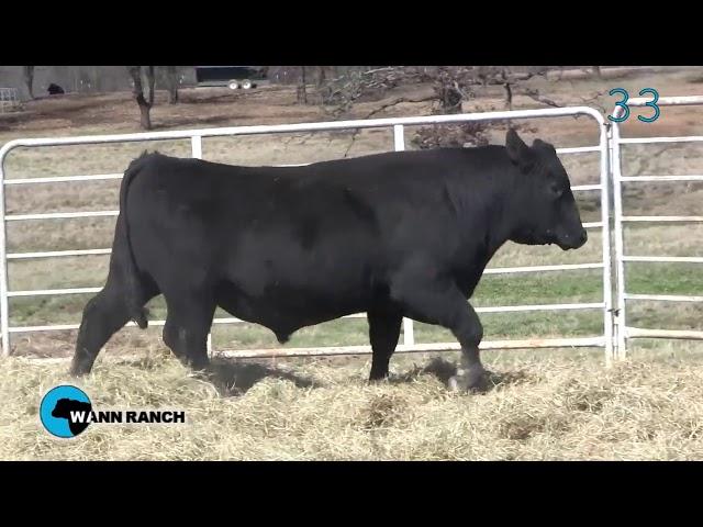 Wann Ranch Lot 33