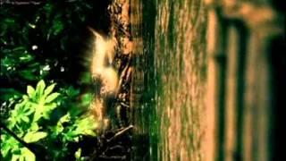Bjork - Alarm Call (1997)