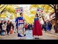 韓国人と日本人が韓国でフリーハグをしてみた Free Hugs for Korea-Japan Peace 2018
