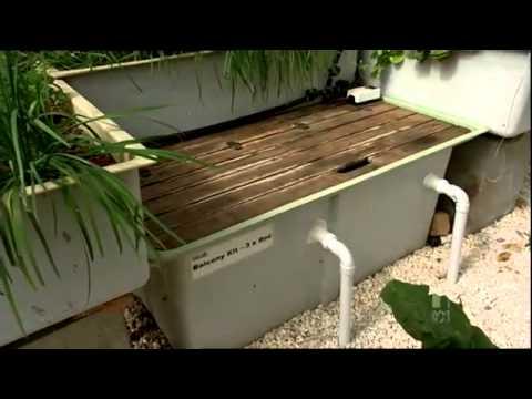 murray hallam on gardening australia youtube