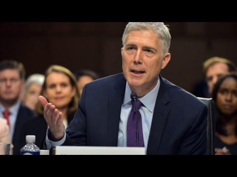 Gorsuch stumped over horse-sized duck question