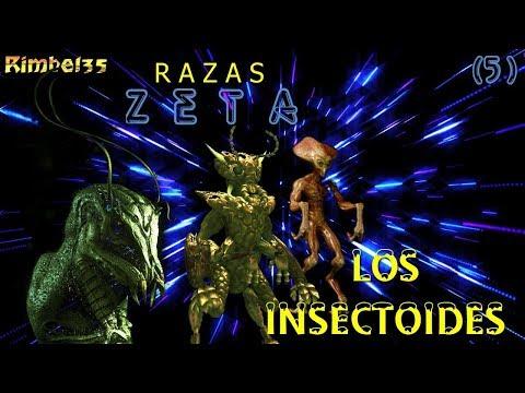 R A Z A S  Z E T A : LOS INSECTOIDES - Cap. 5