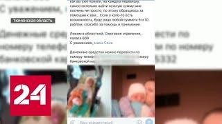 Как в Тюмени аферисты собирали деньги под видом благотворителей - Россия 24
