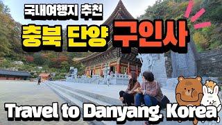 """가을 국내여행지 가볼만한곳 추천 코스 """"충북 …"""