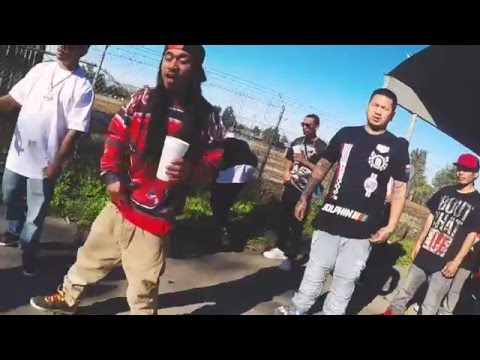 Blame It On Pixie | Bolo ft Redd Dawg Official Music Video