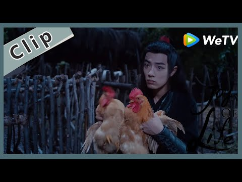 【ENG SUB】Special Clip:The Chicken Which Was Stolen By Lan Wang Ji Is From Teng Zi Jing's House?