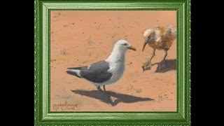Learn how to paint a couple of Seagull