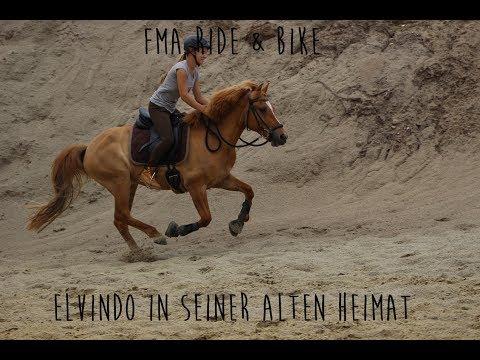FMA - Ride & Bike - Mit Den Pferden Im Urlaub
