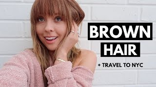 Brown Hair? NOT CLICK BAIT! + Travel To NYC!