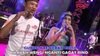 Download Janur Kuning - Gubuk Asmoro [OFFICIAL] Mp3