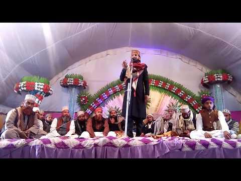 Gulfam Raza Hassani (kabootar naat padhte hain) 21/12/2017