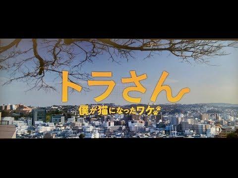 映画『トラさん~僕が猫になったワケ~』予告編