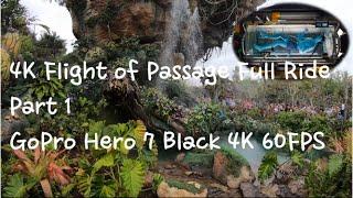 4K - AVATAR Flight of Passage On Ride at Walt Disney World Animal Kingdom 2019 - full ride part 1