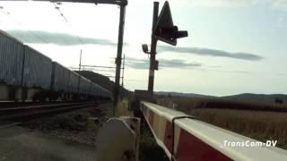 ТрансКом ДВ (Промо-ролик)(www.transcom-dv.com Мы оказываем широкий спектр услуг, включая автотранспортные, железнодорожные, морские, авиа..., 2013-05-31T09:51:21.000Z)