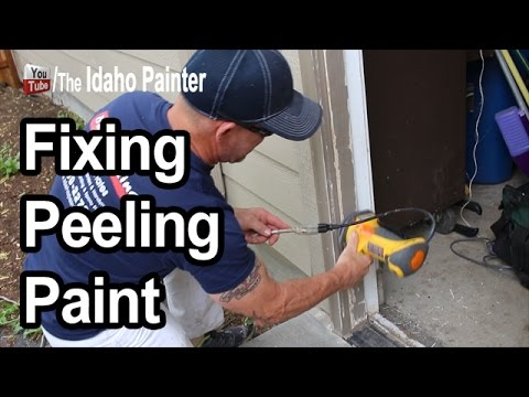 how-to-fix-peeling-paint.