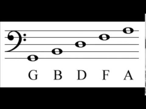 Notes of The Bass Clef and Staff - How To Read Music