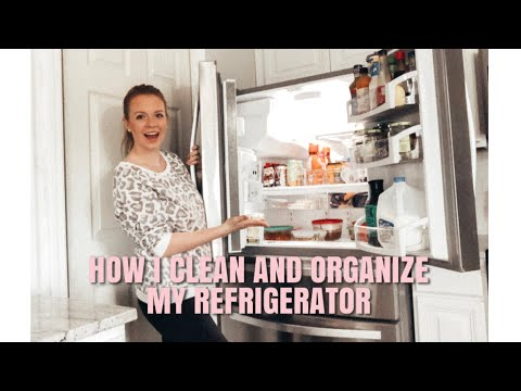 REFRIGERATOR ORGANIZATION IDEAS | CLEAN AND ORGANIZE WITH ME | KATELYN JOHNSON