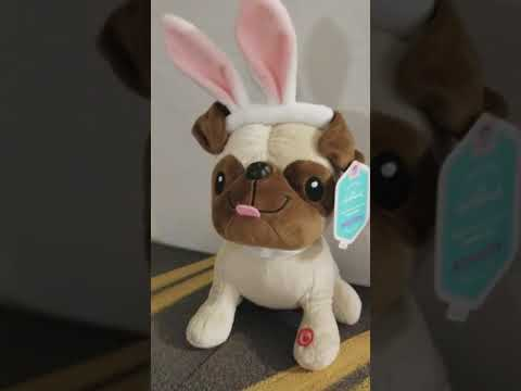 Hallmark Pug sings Watch Me! Plush for sound.
