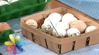 Как выбрать яйца к пасхе - Лучшие советы «Все буде добре»
