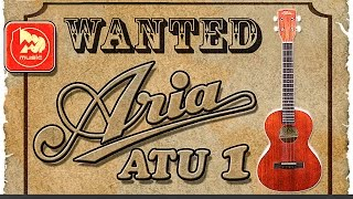 ARIA ATU-1 - тенор-укулеле ( STING Fields of gold tenor ukulele cover )