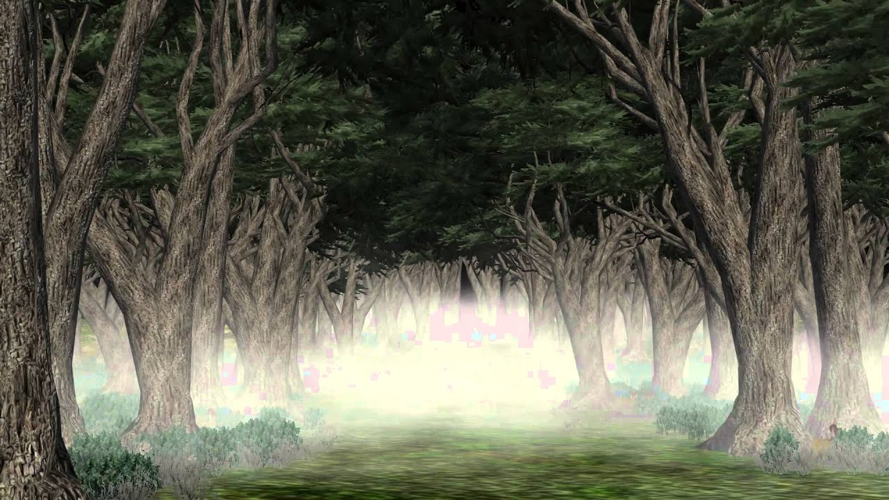 dark creepy forest halloween video background set a youtube - Halloween Background Video