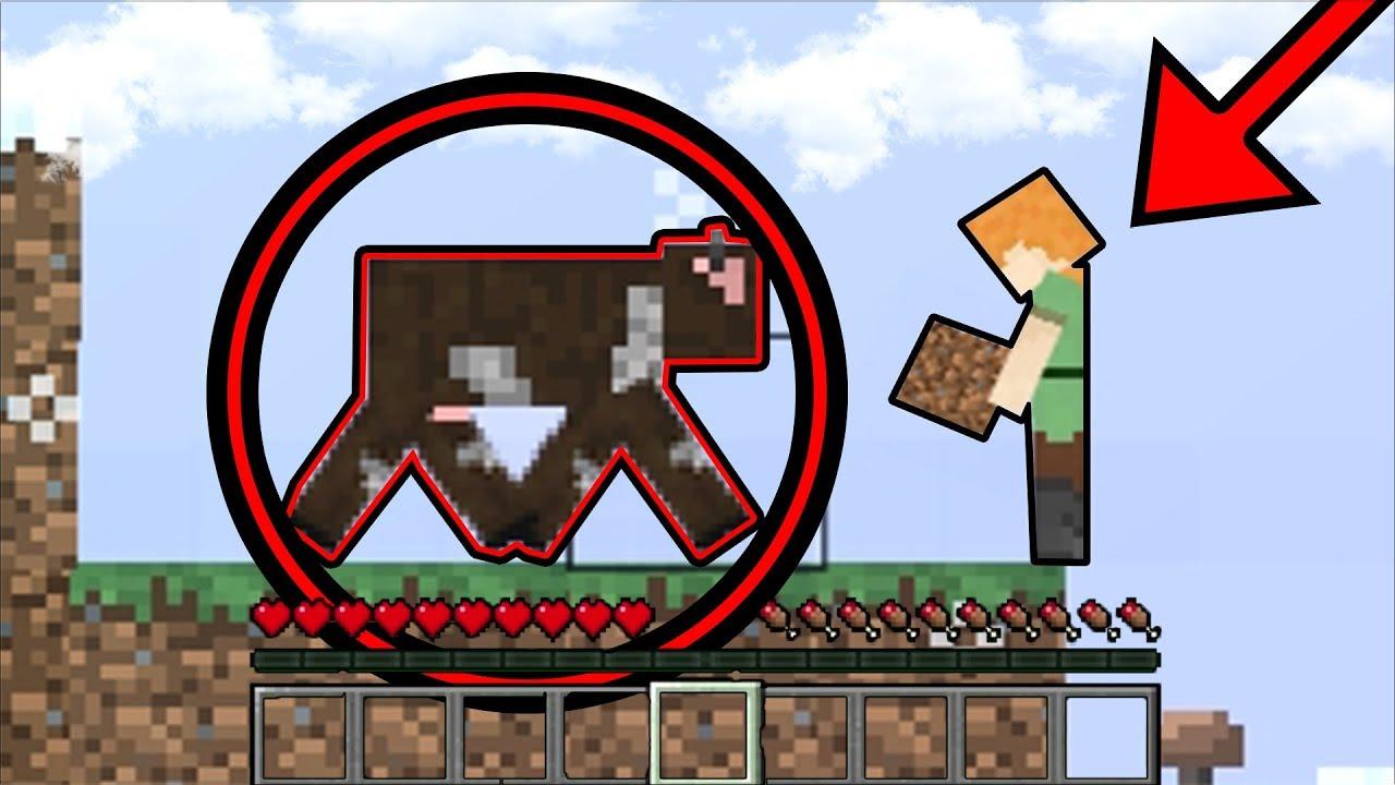 เมื่อ มายคราฟ เป็นเกม 2D และ คุณภาพสุดแย่...   Minecraft
