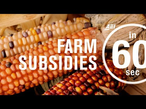 Farm subsidies: How effective are they? | IN 60 SECONDS
