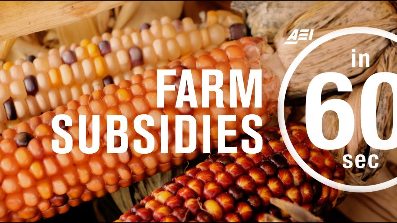 Watch How to Get a Farm Subsidy video