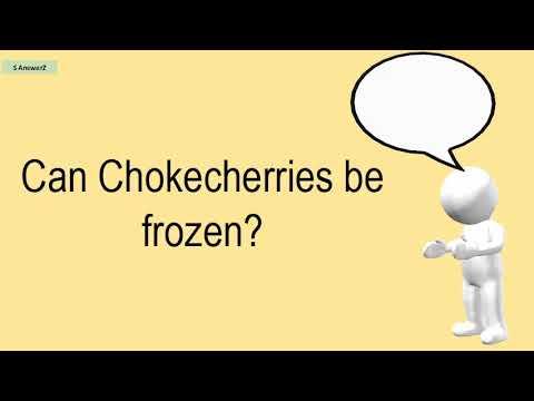 Can Chokecherries Be Frozen?