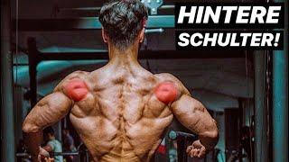 Hintere Schulter - So trainierst Du sie RICHTIG! |Top 3 Übungen