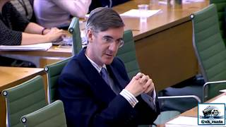 Jacob Rees-Mogg questions Guy Verhofstadt over EU & their inflexible 'Irish Border' stance